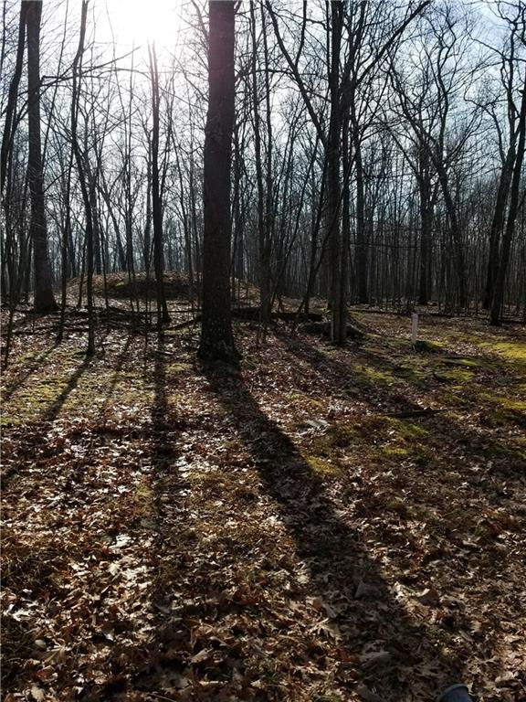 105 Dogwood Drive Out of NYC Hawley PA 18428